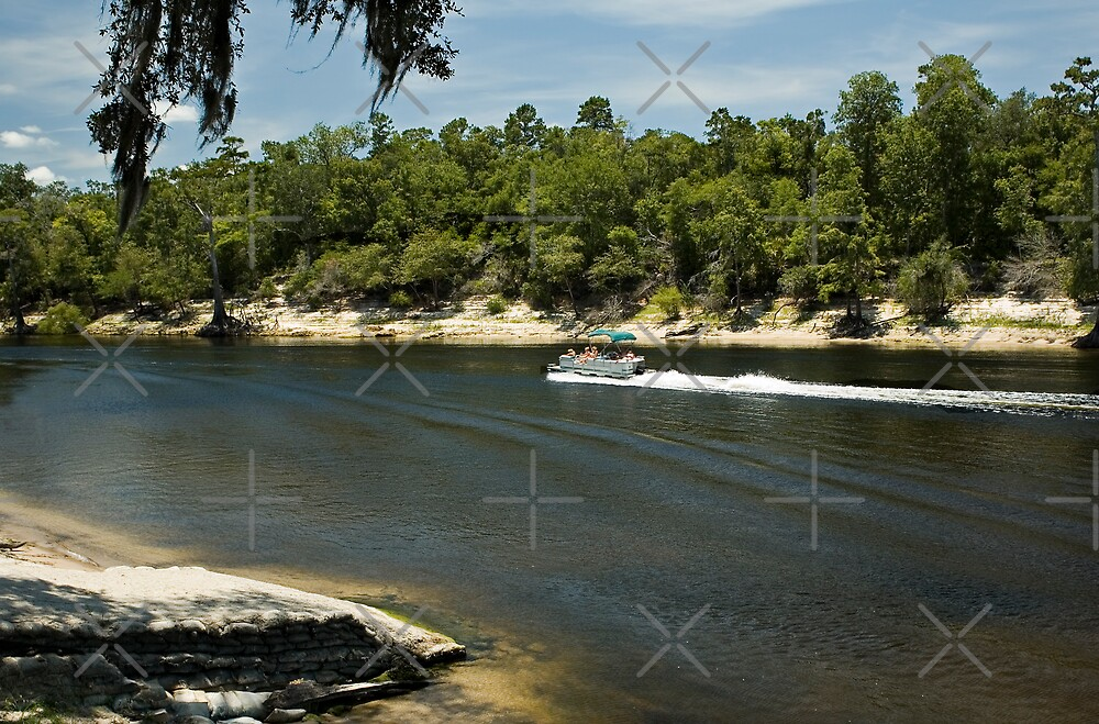 Pontoon Boat on the Suwannee River by Stacey Lynn Payne
