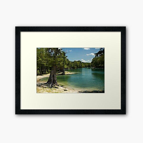 River Beach, Santa Fe River, north Florida Framed Art Print