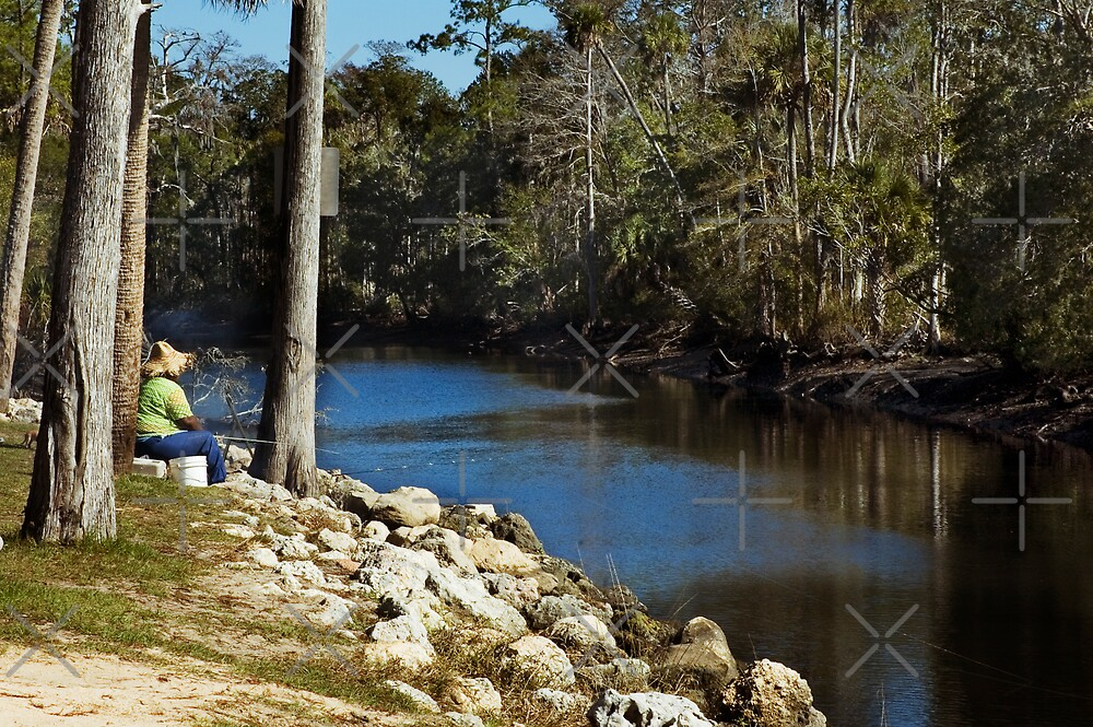 Fishing on the River by Stacey Lynn Payne