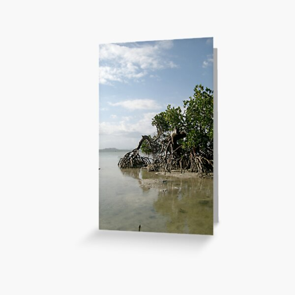 Tropical scenery Greeting Card
