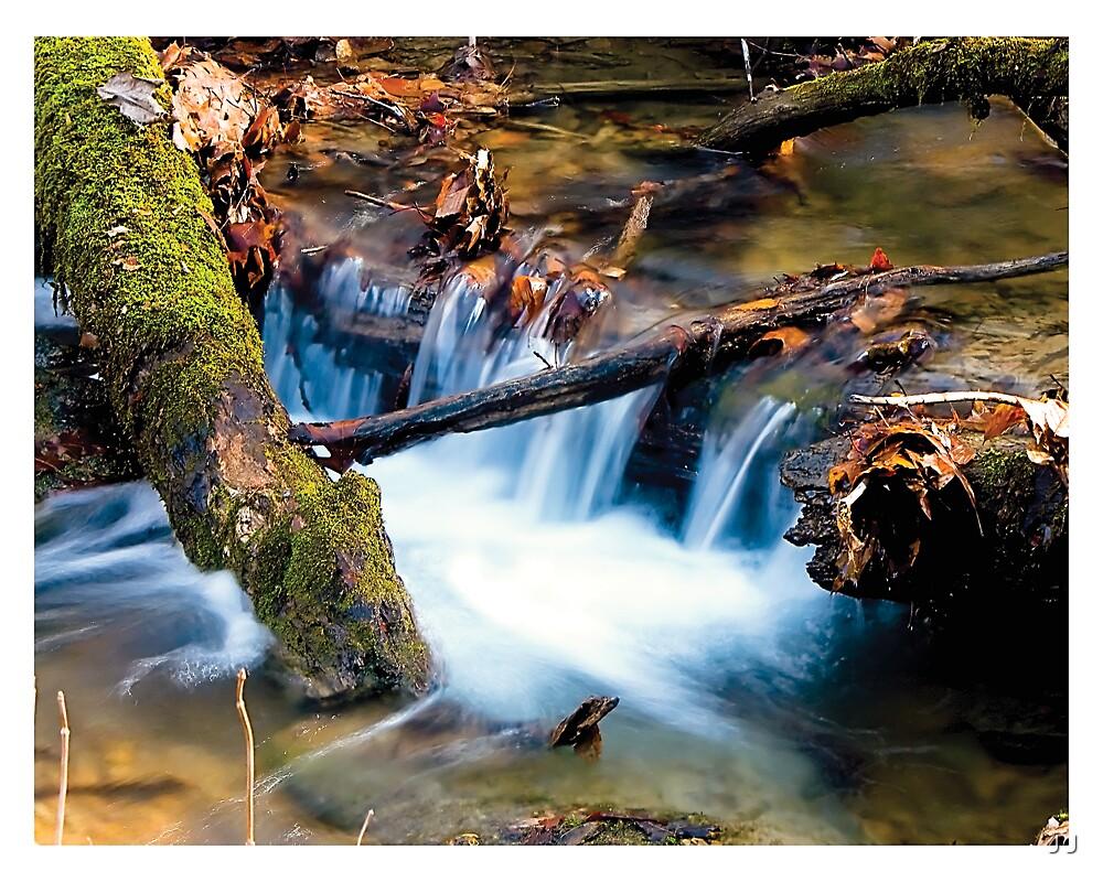 Mountain Stream by J J