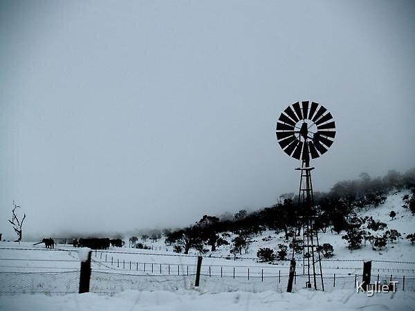 Windmill by KylieT