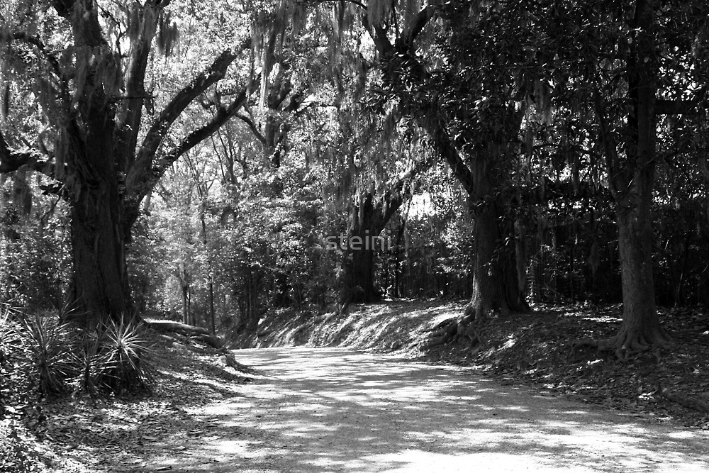 The Path by steini