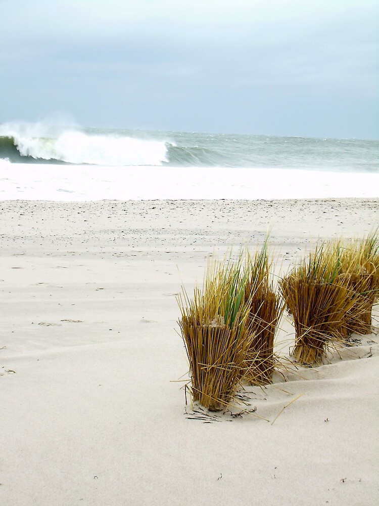 Waves and dunes by Jen29