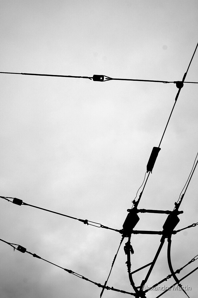 Trolly Lines by Alexandra Martin