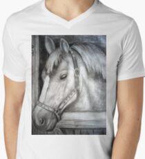stall 69 Men's V-Neck T-Shirt