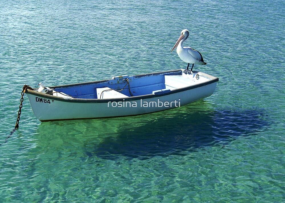 captain pelican by Rosina  Lamberti