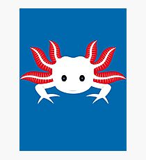 Axolotl Photographic Print