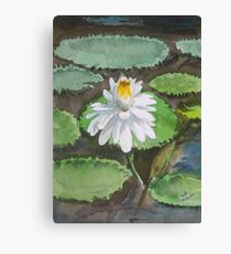 Lotus in watercolour Canvas Print