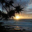 Aussie sunrise by Jeannine de Wet