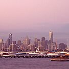 the melbourne skyline from williamstown by Mark Reed