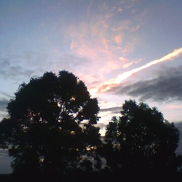 Sky Line by AusGate