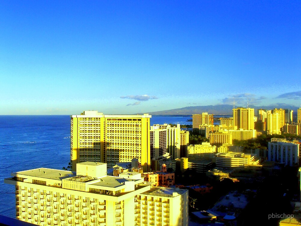 Waikiki, Oahu, Hawaii by pbischop