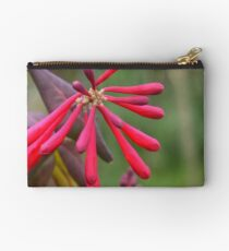 Trumpet Honeysuckle - Buds of Coral Woodbine Studio Pouch