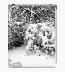 SNOW SCENE 1 iPad Case/Skin