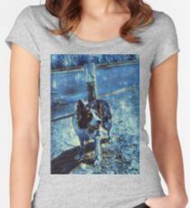 Border Collie - Mesmerizing Eye - Herding Dog - Stylized Painting 2 Women's Fitted Scoop T-Shirt