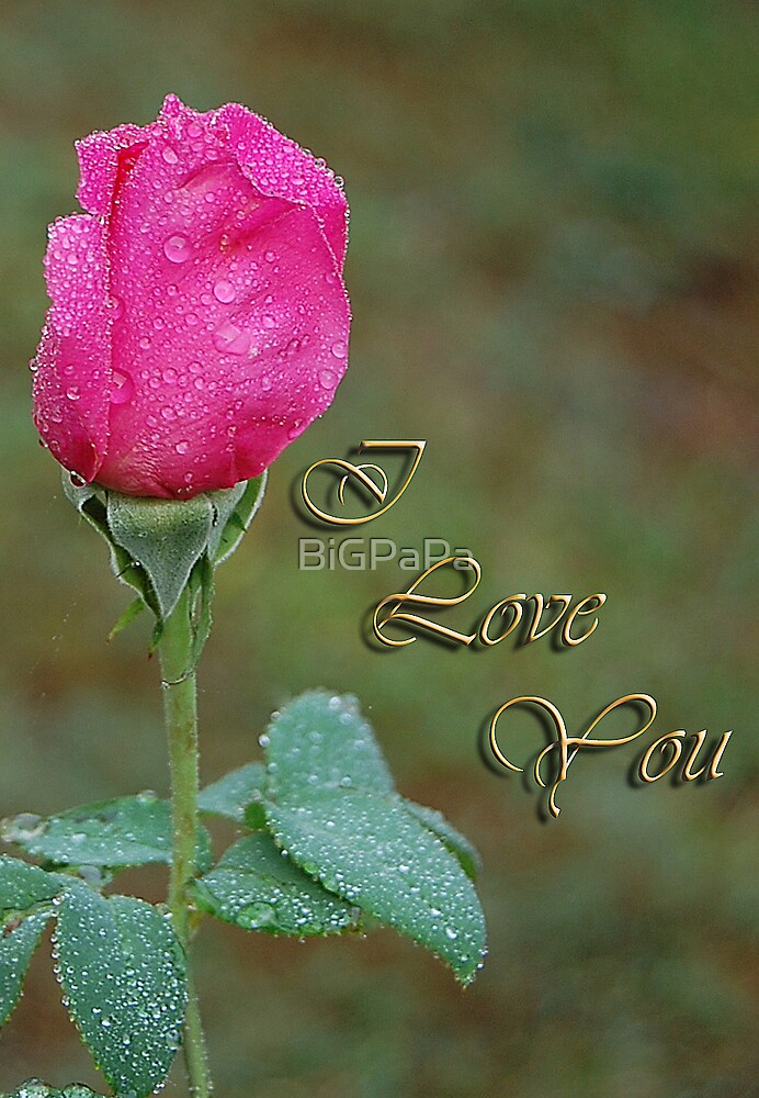 I Love You by BiGPaPa