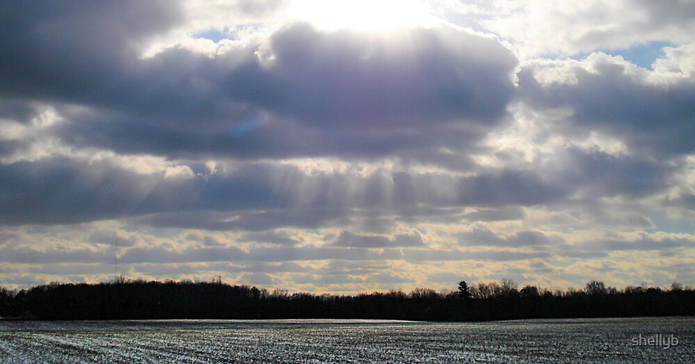 Winter Rays by shellyb