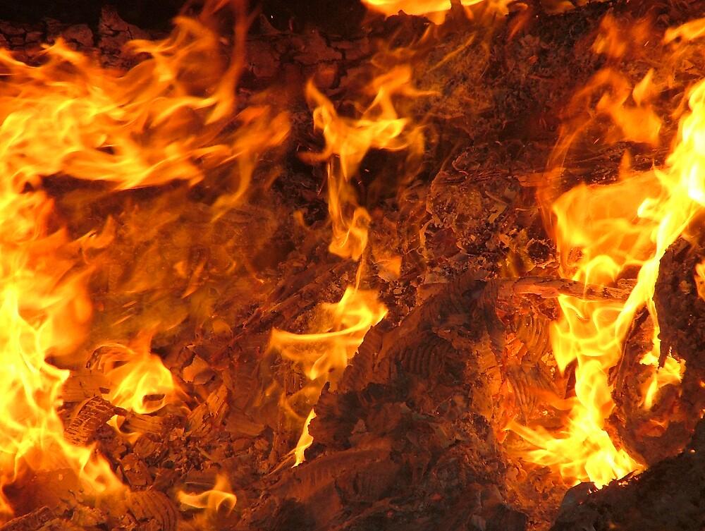 Face in the Fire by Ferguson