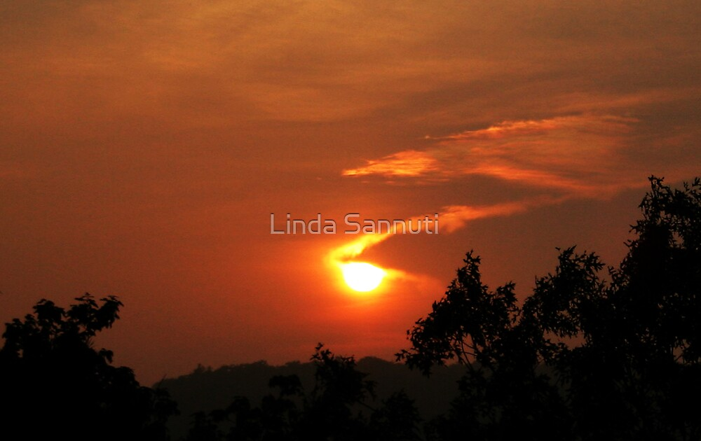 sunset by Linda Sannuti