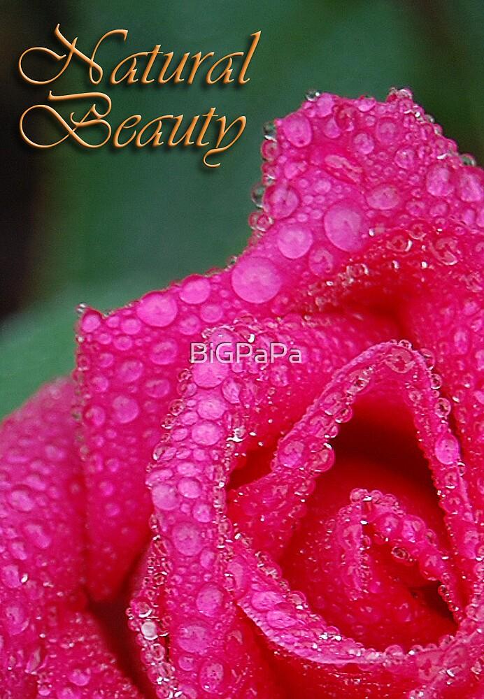 Natural Beauty by BiGPaPa