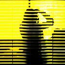 yellow shadow by AnaBanana