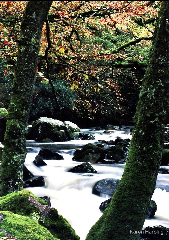 River in Dartmoor by Karen Harding