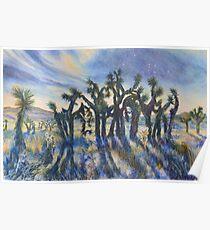 Joshua Trees im Mondlicht Poster