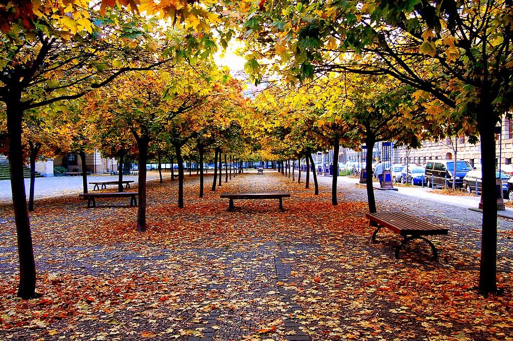 Autumn Love by KaylaMarie