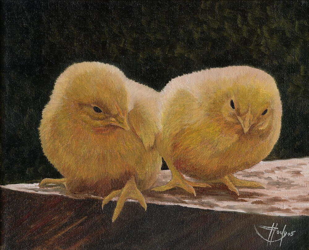 Double Yolk by John Houle