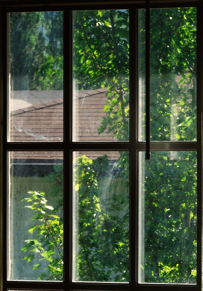 Simple Panes of Glass by J. D. Adsit