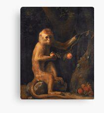 George Stubbs - A Monkey (1799) Canvas Print