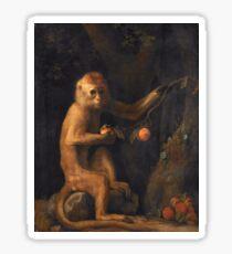 George Stubbs - A Monkey (1799) Sticker