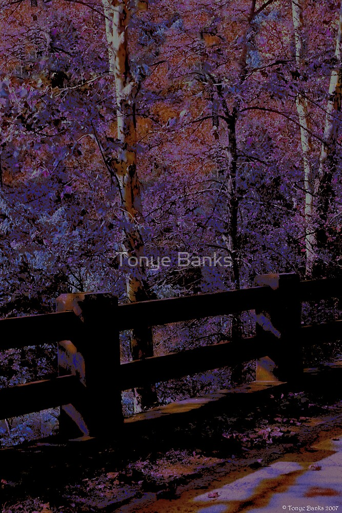 Come Walk With Me by Tonye Banks