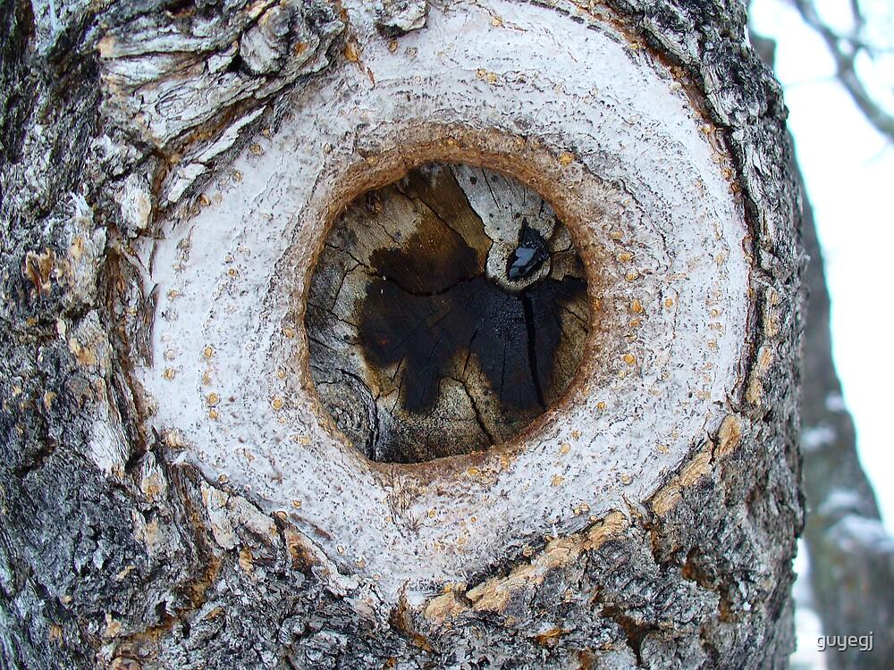 darkeye tree by guyegj