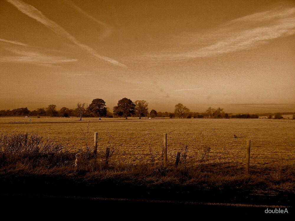 Frosty Field by doubleA