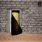 The Yellow Door by Wayne King