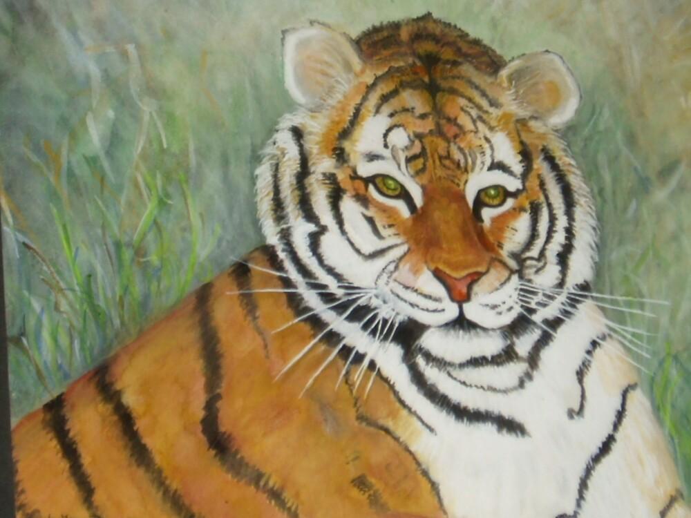 Tiger by dawnlovesrandy