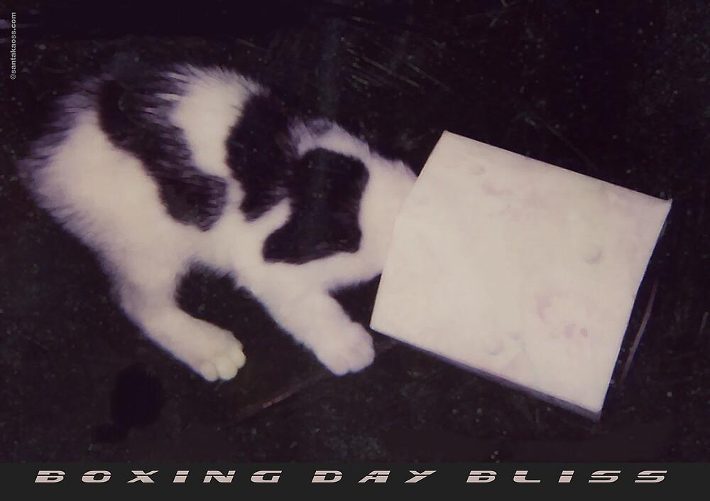 Boxing Day Bliss by santakaoss