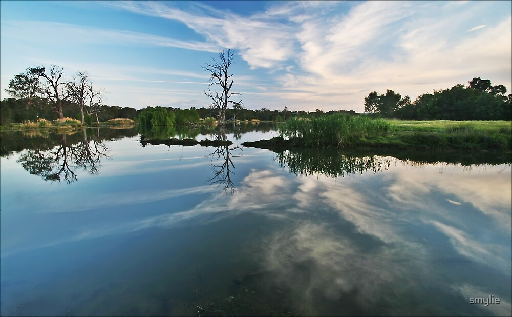 More Reflections by smylie