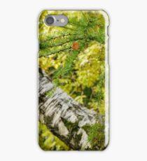 Hodge Close #2 iPhone Case/Skin