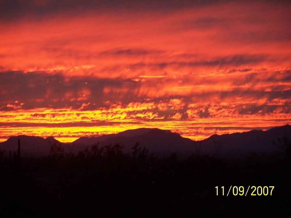 Arizona Sunset by njfeeler