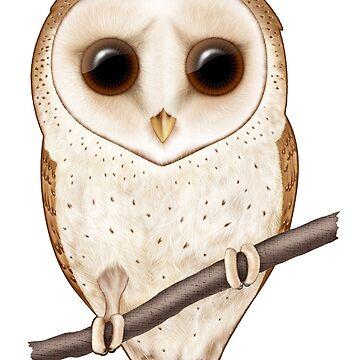 Big-Eyed Barn Owl by SigneNordin