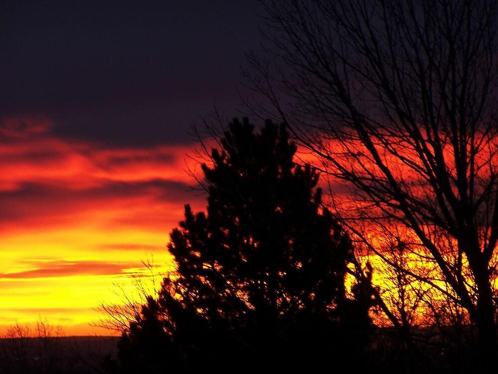 Dawn's Fiery Greeting by asrobinson