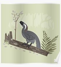 Utahraptor in the Forest Poster