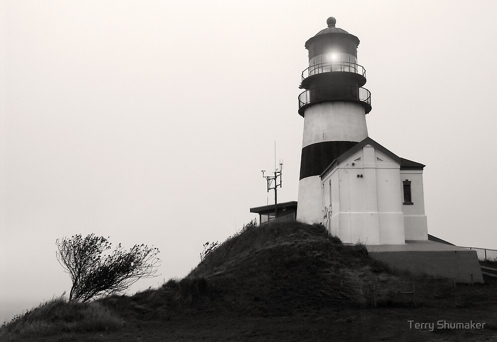 Cape Disappointment Light by Terry Shumaker