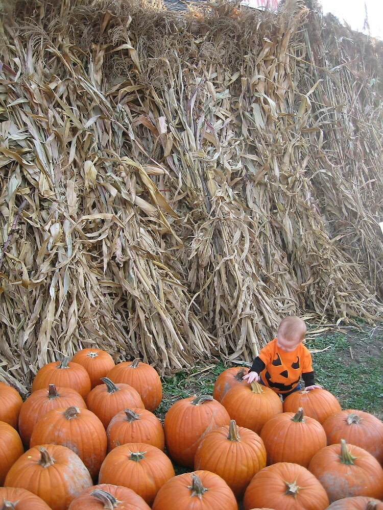 Pumpkin patch by AvenLove