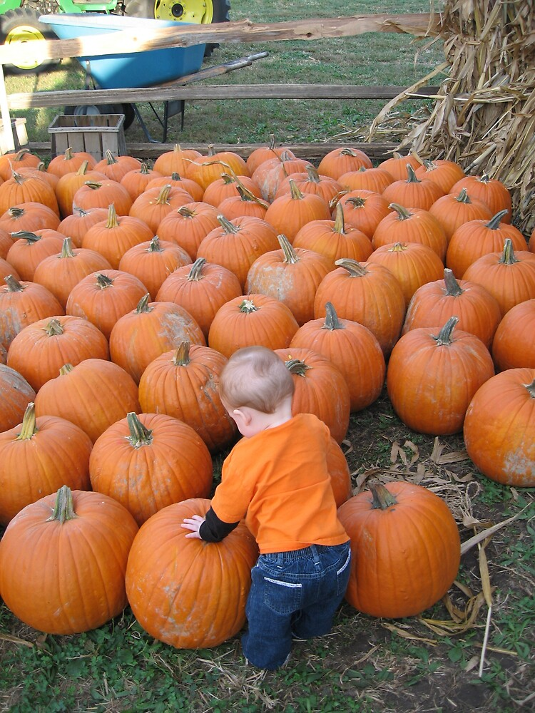 Our pumpkin picking her pumpkin by AvenLove