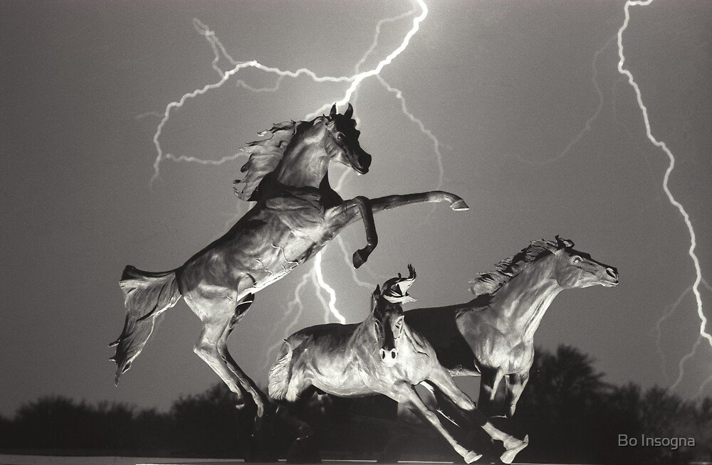 Lightning at horseworld Black and white by Bo Insogna