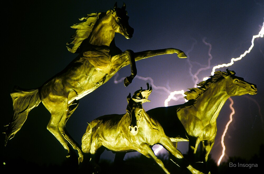 Lightning at Horseworld Color by Bo Insogna